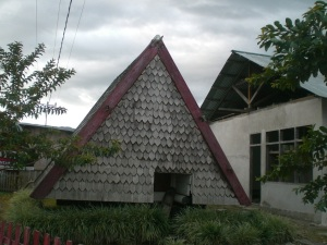 this is one example of traditional Poso house